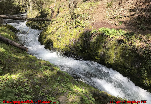 Washington Buck Creek Waterfalls