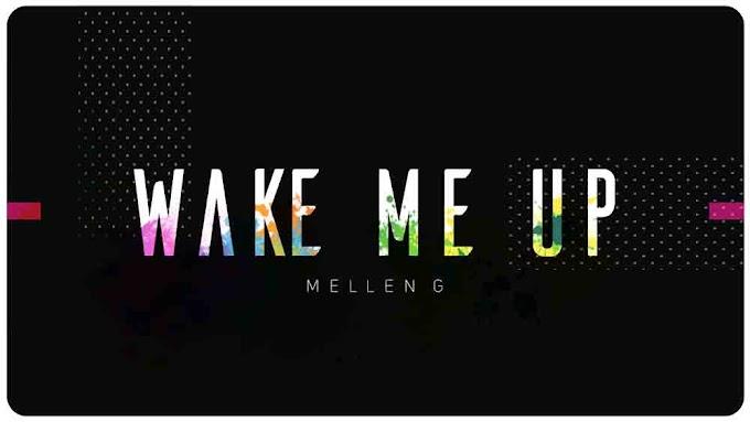 Wake Me Up Ringtone