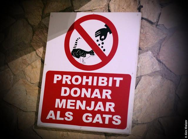 запрет в каталонии