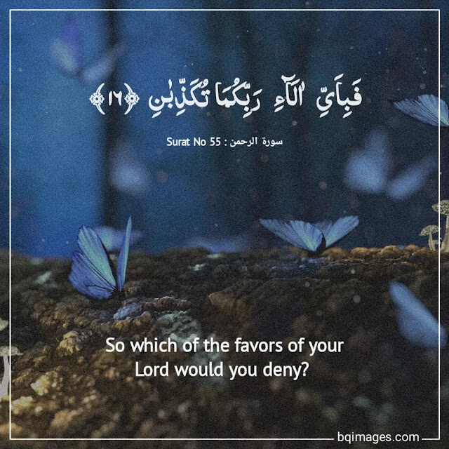heart touching verses of quran
