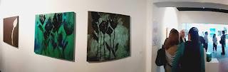 Muestra Colectiva Encuentro Natural Homenaje a la Artista-Docente Teresa Gabaldon en la Avap Caracas