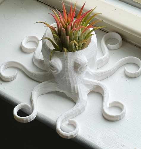 3D Printed Mini Ocotopus Planter