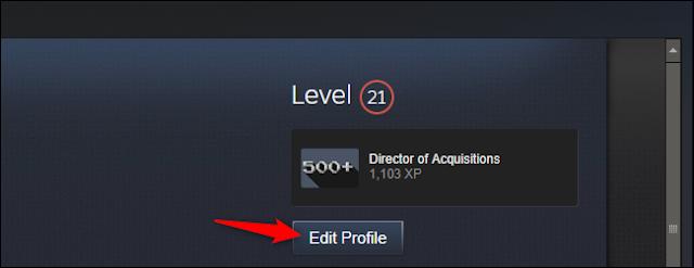 تحرير ملف التعريف الخاص بك في Steam