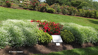 Friendship garden, Boothe Memorial Park and Museum - Stratford, CT