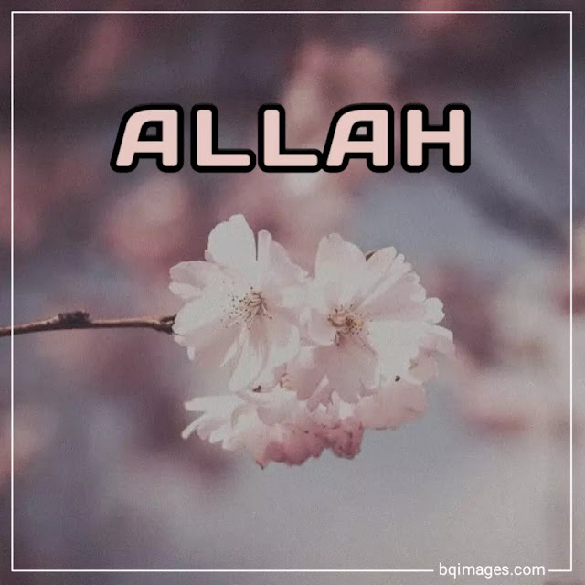 Allah name dp in English