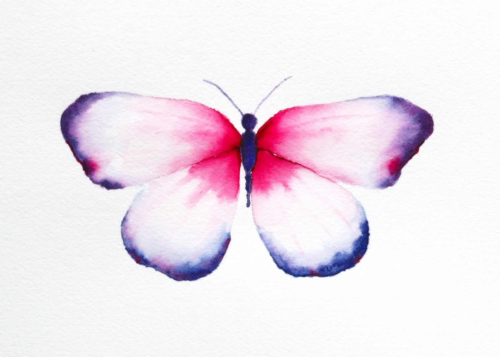 My Painting Room New Butterfly Prints