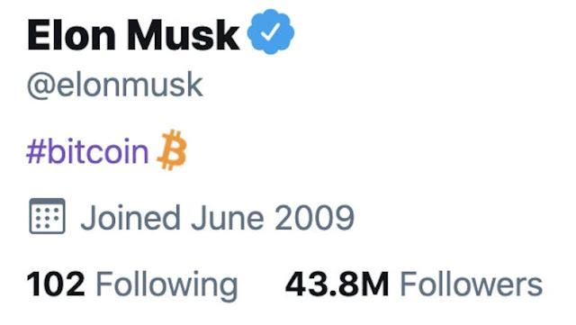 Elon Musk twitter bio is Bitcoin
