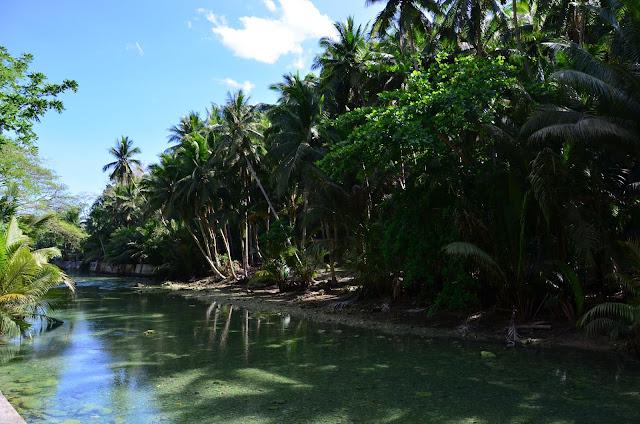 Kawasan Falls - Philippines