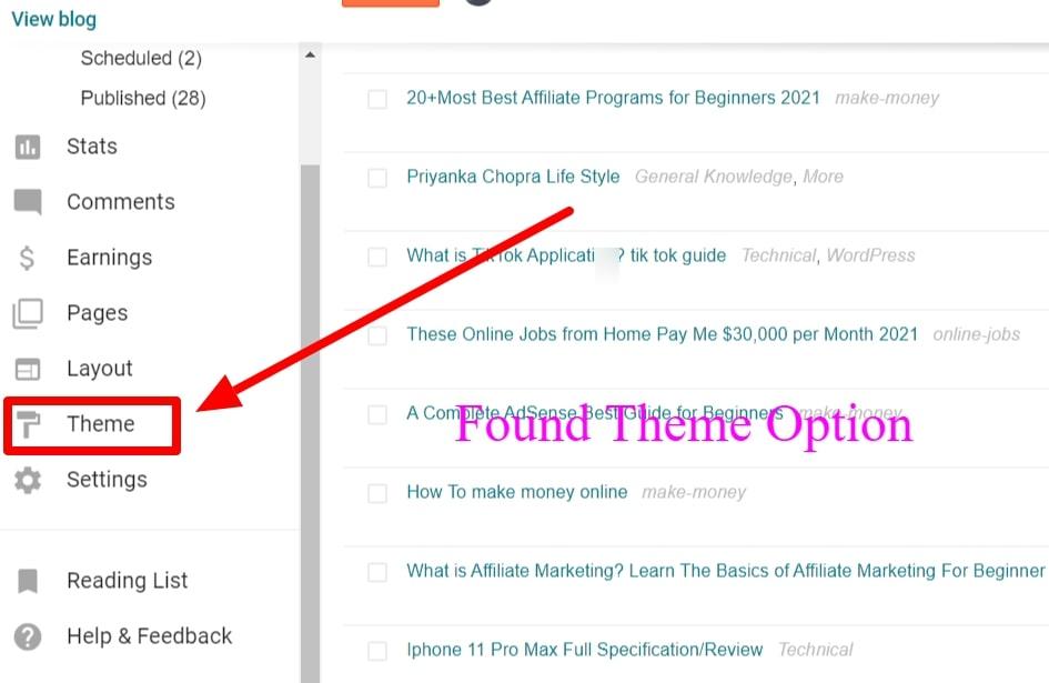 Find  Theme Option
