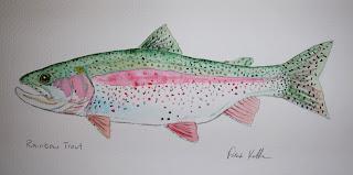Rainbow Trout, Pat Kellner, P. H. Kellner, Fishing Art, Fly Fishing Art, Texas Freshwater Fly Fishing, TFFF, Fly Fishing Texas, Texas Fly Fishing