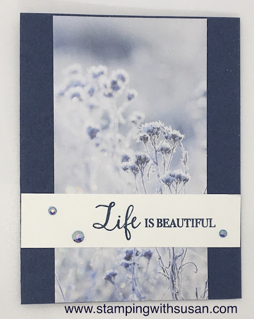 Stampin' Up!, Feels Like Frost, Life is Beautiful, www.stampingwithsusan.com,
