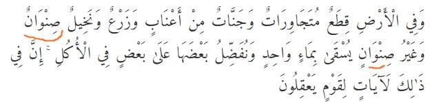 Contoh bacaan Izhhar Wajib pada Surat Ar Rad ayat 4