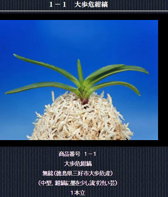 http://www.fuuran.jp/1-1.html