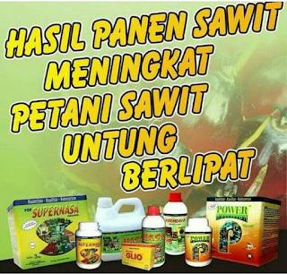 Harga Pupuk Sawit Nasa