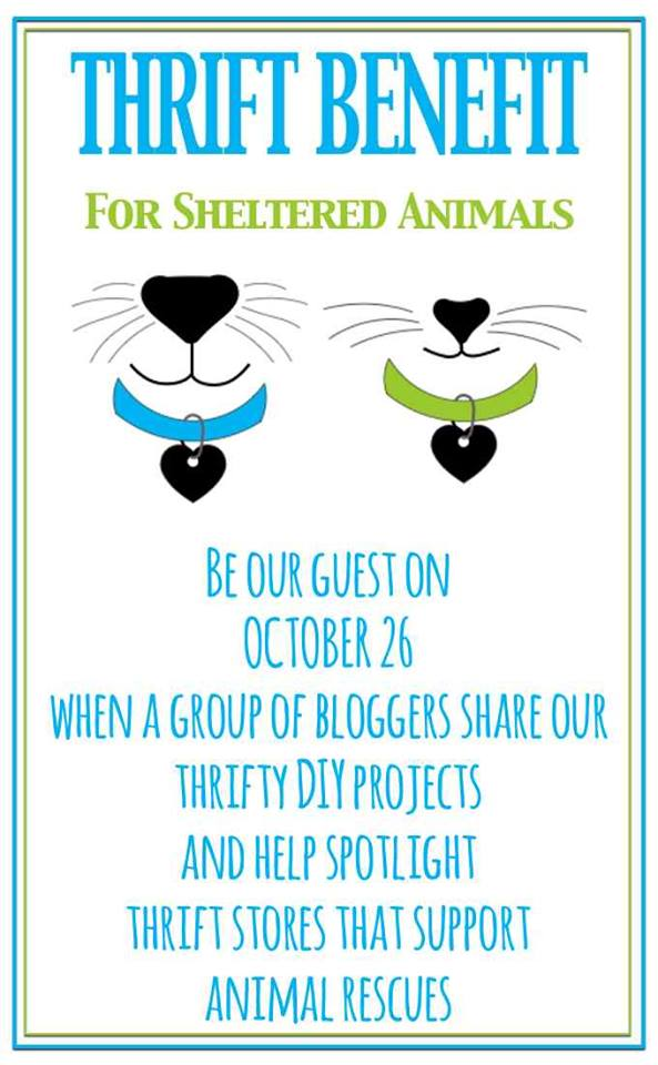 Join us for Thrift for Animals