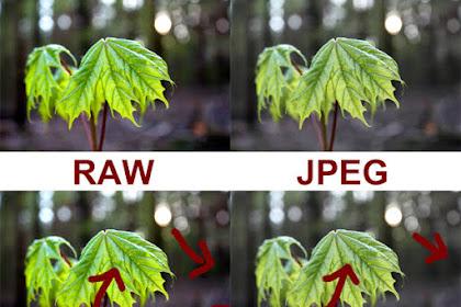 apasih format RAW dan JPEG?