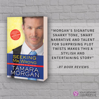 Review, Excerpt, Giveaway, Seeking Mr. Wrong, Tamara Morgan, Sourcebooks Casablanca