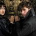 O trailer de 'Animais Fantásticos: Os Crimes de Grindelwald' está cheio de surpresas!