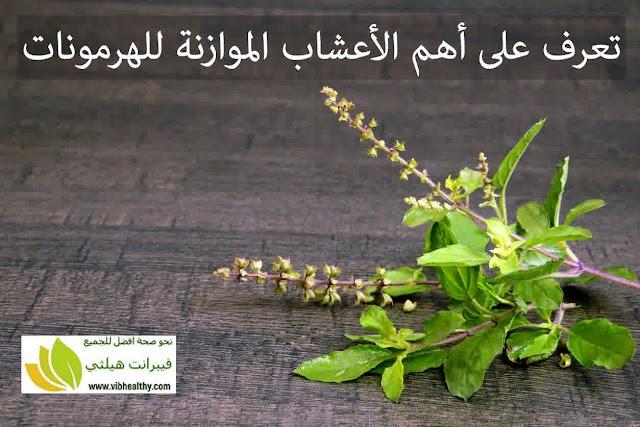 اعشاب تنظم هرمونات الجسم