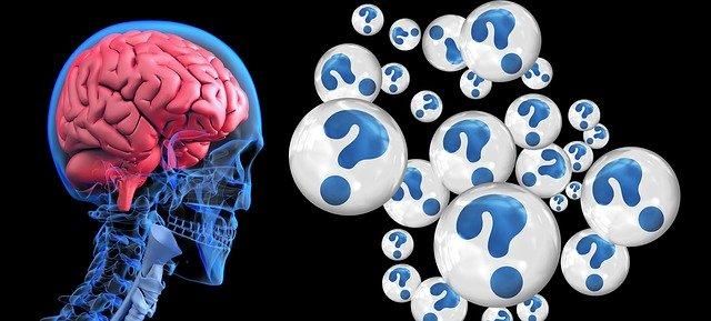 what is blue brain project