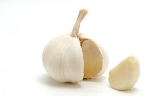15 Manfaat Makan Bawang Putih dan Madu Untuk Kesehatan Tubuh