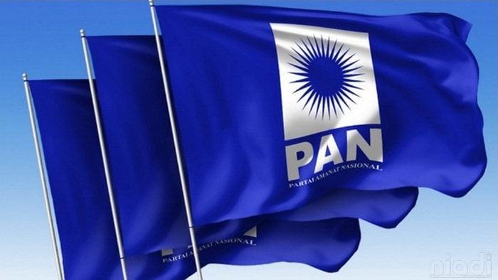 Manuver Politik Dua Kaki PAN Pasca Quick Count dan Situng KPU 60%