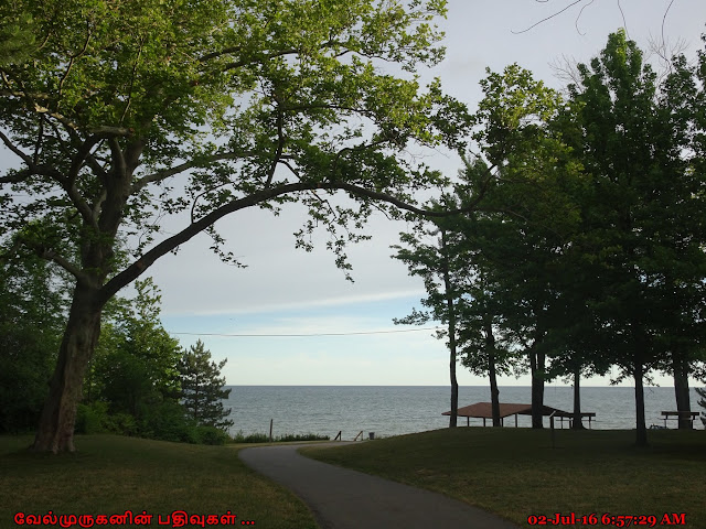Lake Erie State Parks