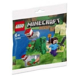 Minecraft Steve? & Creeper Lego Set