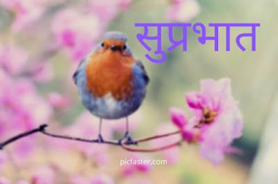 Best Good Morning Images, Photos, In Marathi [ 2020 ]