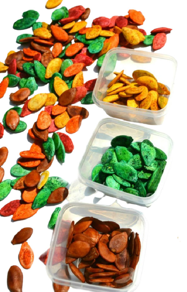 Dye pumpkin seeds  for fall crafts with this easy recipe. #pumpkinseedsrecipe #howtodyepumpkinseeds #pumpkinseedscrafts #fallcraftsforkids #growingajeweledrose