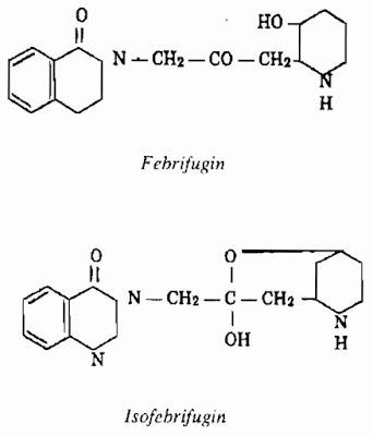 Thành phần hóa học Thường Sơn - Dichroa febrifuga - Nguyên liệu làm thuốc Chữa Cảm Sốt