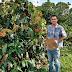 Tecpar amplia certificação de orgânicos no País