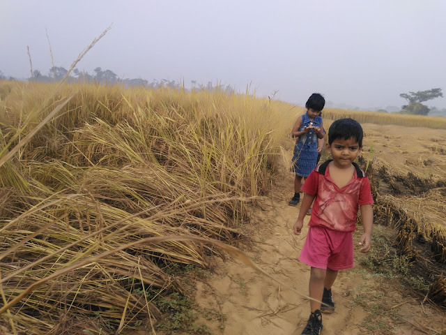jogging kids in the paddy fields of india