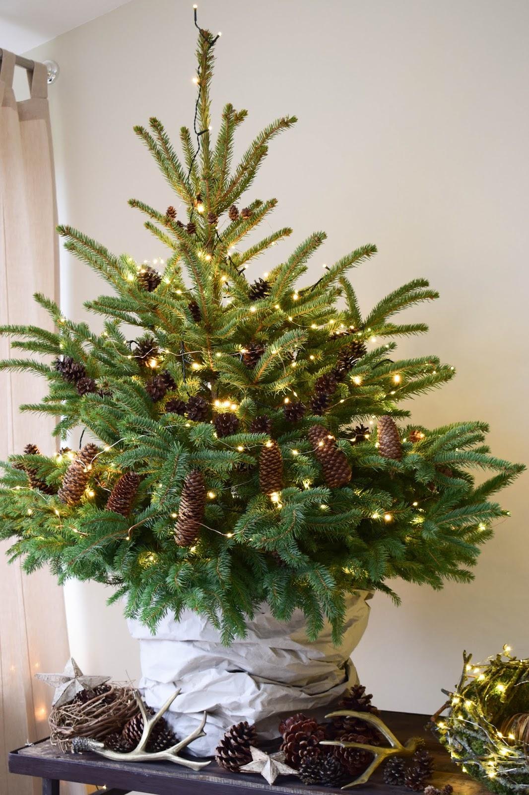 nat rliche deko f r den weihnachtsbaum. Black Bedroom Furniture Sets. Home Design Ideas
