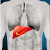 Is HemoHIM good for liver?