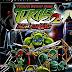 Download Teenage Mutant Ninja Turtles 2: Battle Nexus PS2 ISO