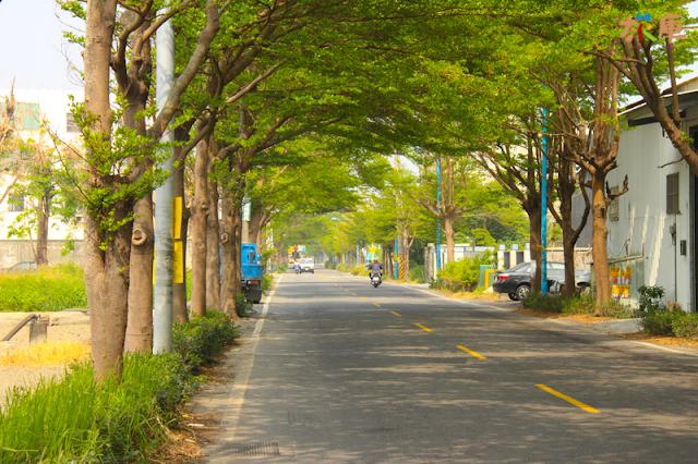 鶴鳴社區綠色隧道