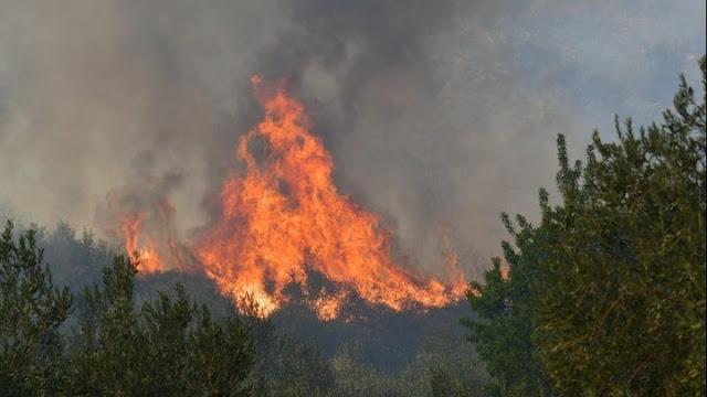 Σε εξέλιξη η πυρκαγιά στην Αρχαία Κόρινθο - Δόθηκε εντολή εκκένωσης του χωριού Σολομός