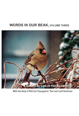 """This image is of the cover for my book, """"Words In Our Beak Volume Three."""" It is available on Amazon 9https://www.amazon.com/Words-Beak-Three-Patricia-Youngquist/dp/0996378545 as well as wherever books are sold."""