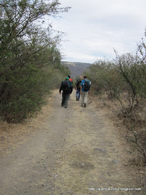 Cerro Viejo - Rumbo a el Tecolote