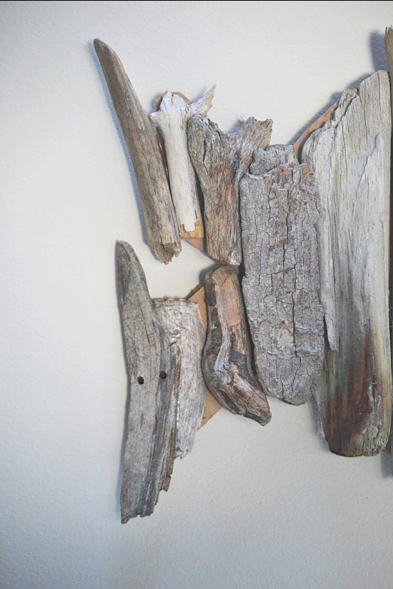 driftwood pieces on the tail
