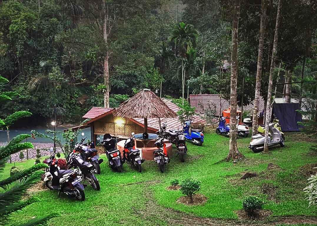 Batu Katak Wisata Bunga Raflesia Goa Dan Alam Di Bahorok