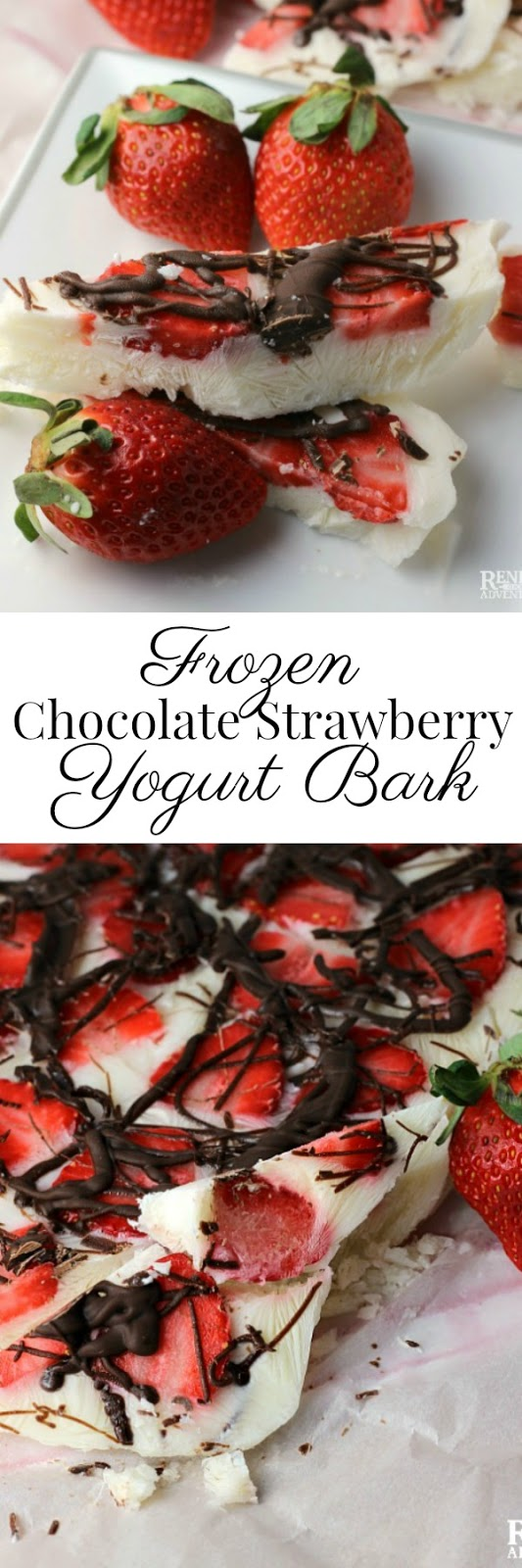 Frozen Strawberry Chocolate Yogurt Bark | Renee's Kitchen Adventures - Easy, healthy dessert or snack made with fresh Florida strawberries, yogurt, and dark chocolate @Flastrawberries #SundaySupper #FLStrawberry #healthysnack #healthyrecipe