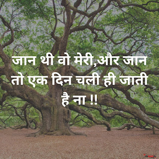 Royal Attitude Status In Hindi, status in hindi