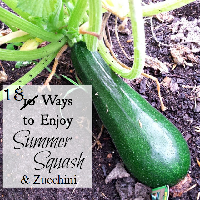 Are you overrun with zucchini and summer squash? Here are 18 ideas for using it in delicious ways, including how to preserve it.