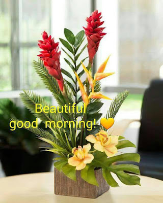 Beautiful Good Morning with Flowers Bookey