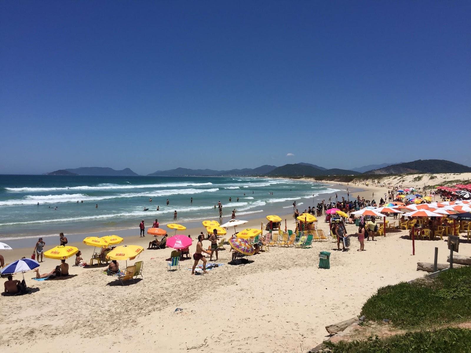 Caderninho da Tia Helo: Florianópolis (2) Joaquina, Praia Mole e Barra da  Lagoa