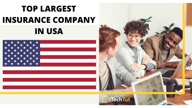 Top 8 largest insurance company in the USA