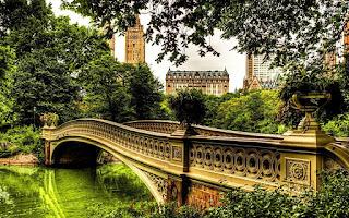 صور خلفيات جسور