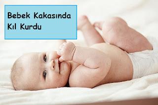 Bebek Kakasında Kıl Kurdu
